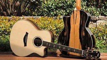 Незвичайна iдея з Іспанії: деревина для музичних iнструментів